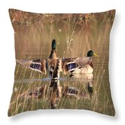 Ducks Of Douglas Throw Pillow