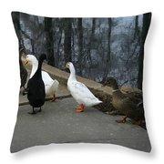Ducks On A Walk Throw Pillow