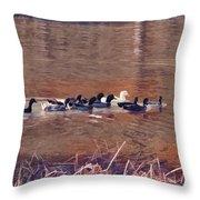 Ducks On Canvas Throw Pillow