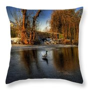 Ducks On Ice Throw Pillow