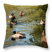 Ducks On The Water Throw Pillow