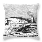Dugout Home, 1871 Throw Pillow