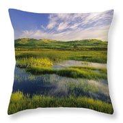 Dune Pond, Brackley, Prince Edward Throw Pillow
