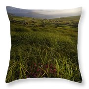 Dunquin, County Kerry, Ireland Rural Throw Pillow