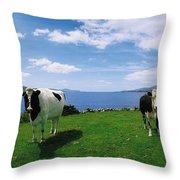 Durrus, Sheeps Head, Co Cork, Ireland Throw Pillow