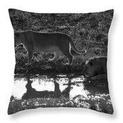 Dusk Reflections Throw Pillow