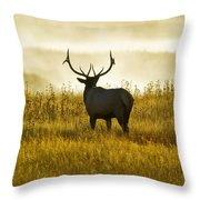 Dusky Elk Throw Pillow