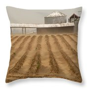 Dust In The Wind II Throw Pillow