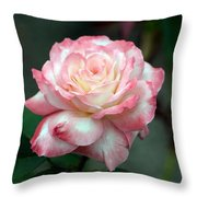 Dusty Pink Throw Pillow