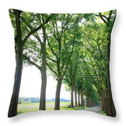 Dutch Country Road Throw Pillow