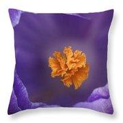 Dutch Crocus Crocus Vernus Flower Throw Pillow