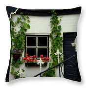Dutch Delight Throw Pillow