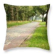 Dutch Road 2 Throw Pillow