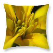 Dwarf French Marigold In Disco Yellow Throw Pillow
