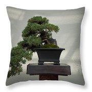 Dwarf Japanese Garden Juniper Throw Pillow