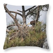 Eagle And Babies Throw Pillow