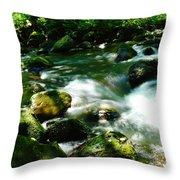 Eagle Creek  Throw Pillow