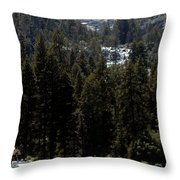 Eagle Falls Emerald Bay Throw Pillow