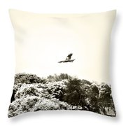 Eagle Flying Above The Forest Throw Pillow