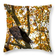 Eagle In Autumn Throw Pillow
