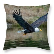 Eagle In Flight Throw Pillow