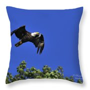 Eagle Over The Tree Top Throw Pillow