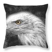 Eagle Two Throw Pillow