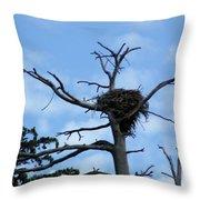 Eagles Nest Throw Pillow