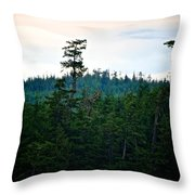 Eagle's Perch Throw Pillow