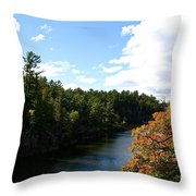 Early Autumn Colors Throw Pillow