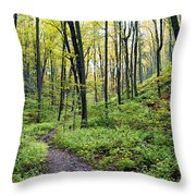 Early Autumn Hike Throw Pillow