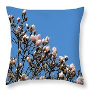 Early Flowering Magnolia Throw Pillow