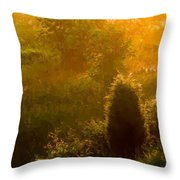 Early Gloaming Throw Pillow by Ron Jones