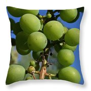 Early Grapes Throw Pillow