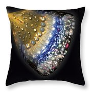 Early History Of The Universe Throw Pillow by Henning Dalhoff and SPL and Photo Researchers