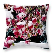 Early Magnolia Late Snow Throw Pillow