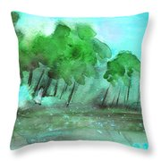 Early Morning 32 Throw Pillow