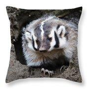 Early Morning Badger Throw Pillow