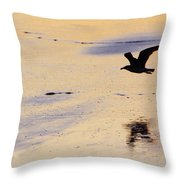Early Morning Flight Throw Pillow