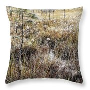 Early Morning Landscape Throw Pillow