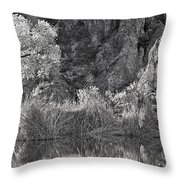 Early Morning Light Black And White Throw Pillow