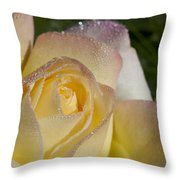 Early Morning Peace Rose Throw Pillow
