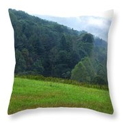 Early Morning Rising Mist Throw Pillow