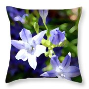 Early Morning Sunlight Throw Pillow