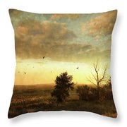 Early Morning Sunrise On The Praires Throw Pillow