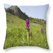 Early Purple Orchids Throw Pillow