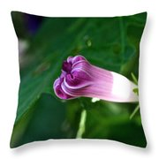 Early Throw Pillow