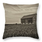 Ears In The Field Throw Pillow