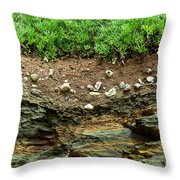 Earth Cross Section Throw Pillow