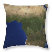 Earth Showing Landcover Over Africa Throw Pillow by Stocktrek Images